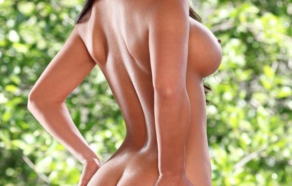 самая грудь попа